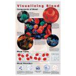 RVFM Visualising Blood Poster