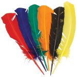 RVFM Assorted Coloured Turkey Quills – Pack of 14