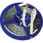 Barthelme 50510515 LEDTape Flex16 Constant Power Source Daylight W…