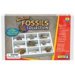 RVFM Geo Safari Fossil Set