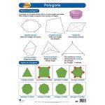 Polygons Wall Chart